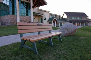 Bench at the Horicon Marsh