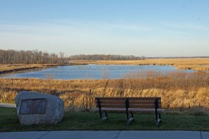 Bench Overlooking the Horicon Marsh