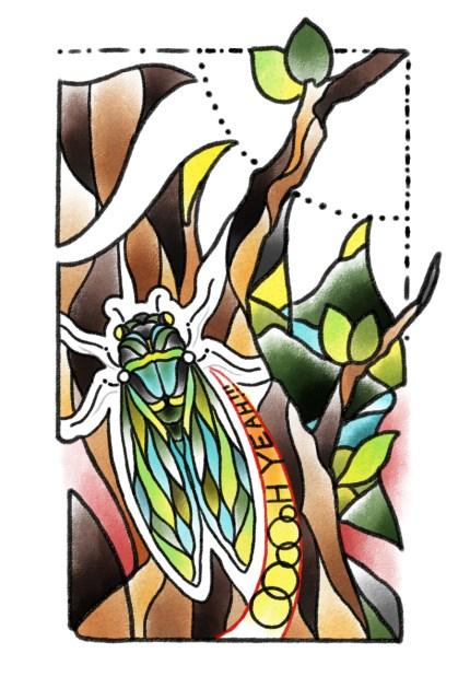 蝉のタトゥーデザイン画像