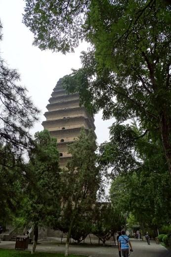 horizon-mix6t-pagode-oie-sauvage-xian
