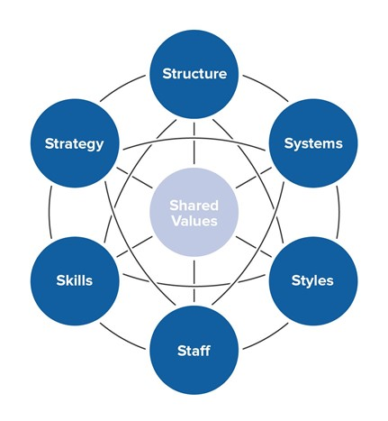 Diagram centre circle text says 'shared values' interconnecting lines to other circles with text structure, systems, styles, staff, skills, strategy