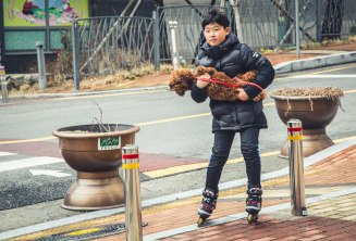 A young boy rollerblading his dog around. Looks super dangerous and one of my favorite photos I've taken here. Donggu, Ulsan.