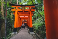 This is what the larger torii gates look like on the way up Fushimi Inari.