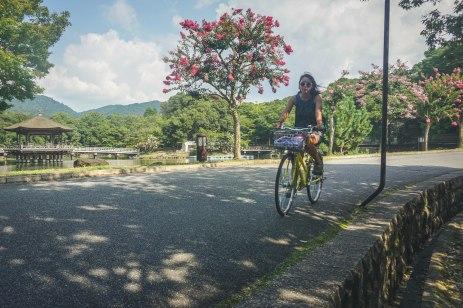 Another shot of Abby riding through Nara park.