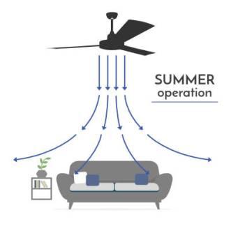 Winmill designer Fans - Summer
