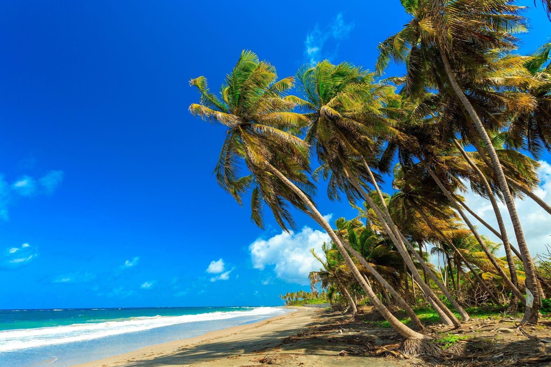 Choose Horizon For First Class Grenada Yacht Charters