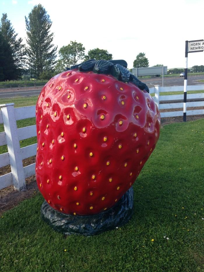 Giant Strawberry Fibreglass Model in Vogue Photoshoot