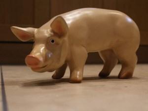 Life Size Pig Models