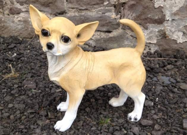 Life Size Model Chihuahua Dog