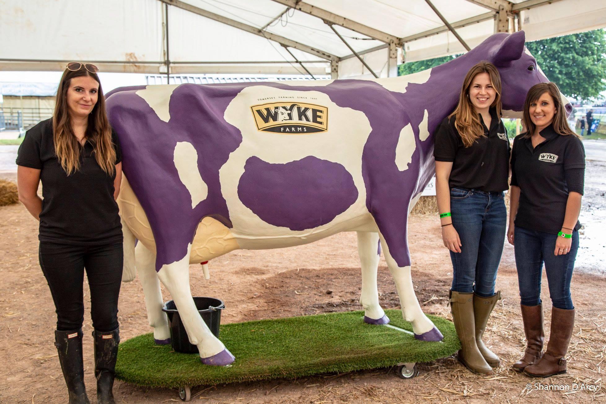 Wyke Farms Life Size 3D Model Cow on Turfboard