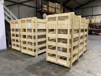 Model Milking Cows in Shipping Crates