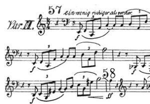 Low horn