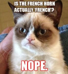 grumpy-cat-FRENCH