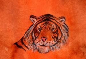 Tigre horóscopo chino, astrología