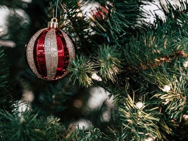 decoración navideña-signo-zodiacal-astrológico