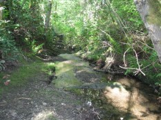 Quiet streams and all.