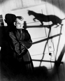 blackcat-poelzig-cat-shadow