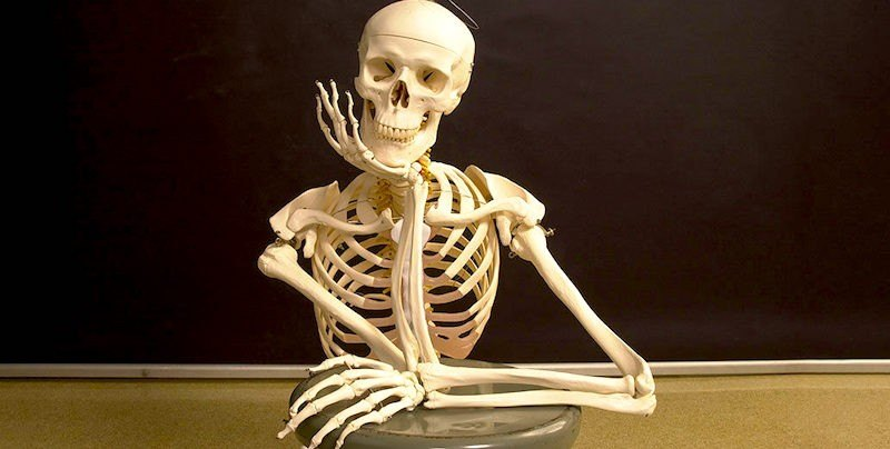 Dave Hester Skeleton