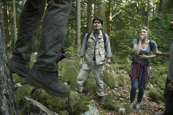 the forest film still