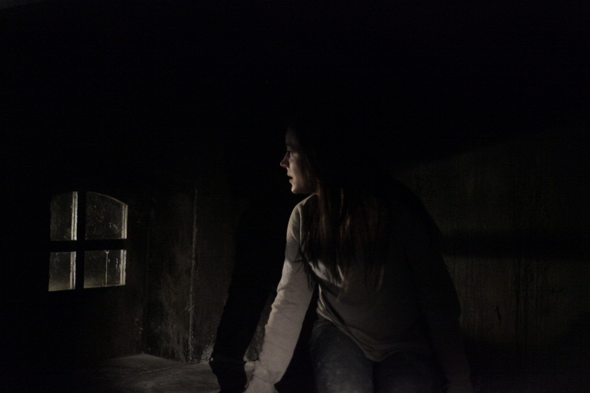 Havenhurst Opens its Doors in Select Theaters and on Cable and