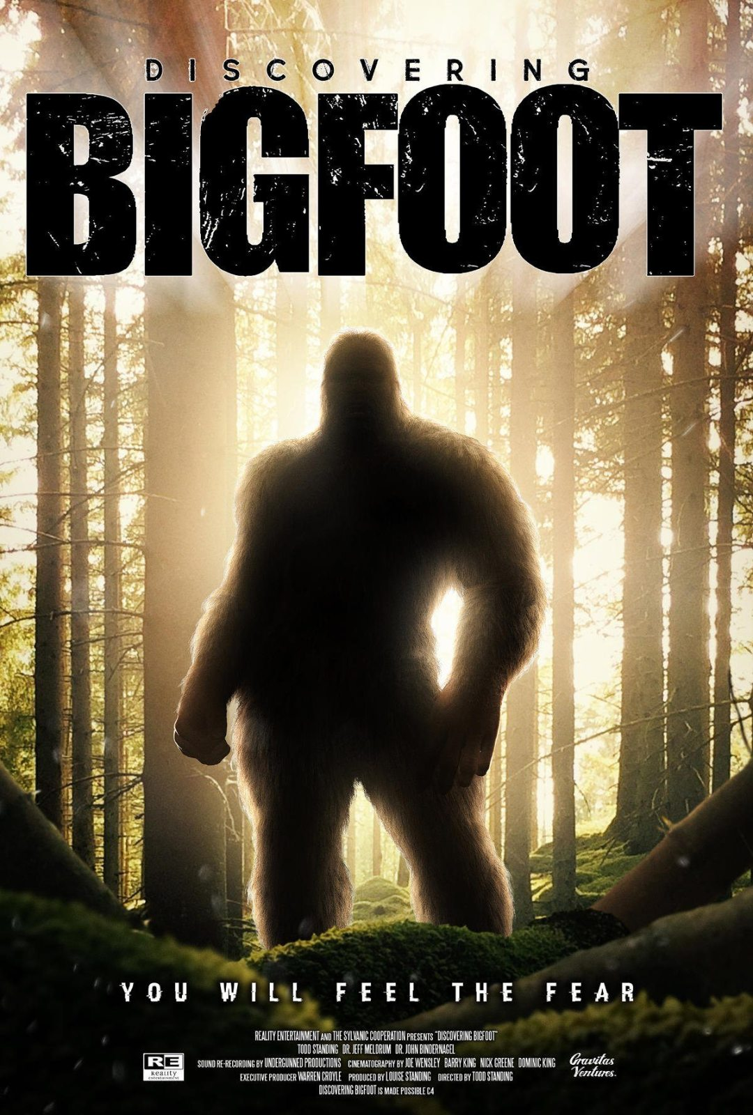 Are You Ready to Start 'Discovering Bigfoot?'