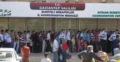 ما حقيقة طلب شهادات الجامعيين السوريين لمنحهم الجنسية التركية؟