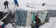 دراسة للأمم المتحدة: أكثر من 75 بالمائة من السوريين في لبنان تحت خط الفقر