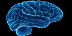 التحفيز العميق للدماغ قد يحد من أعراض الخرف