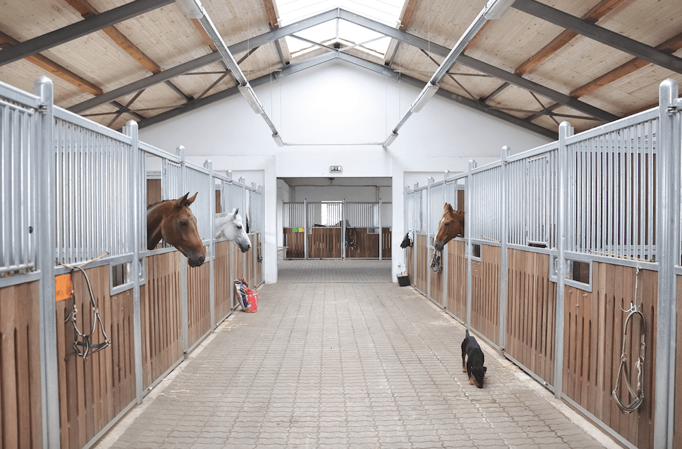 Stable yards abroad
