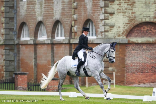 Caroline Powell and one of her team of very smart greys, Chance Encounter VII, sitting 15th after dressage in the CCI2* (Image: Libby Law)