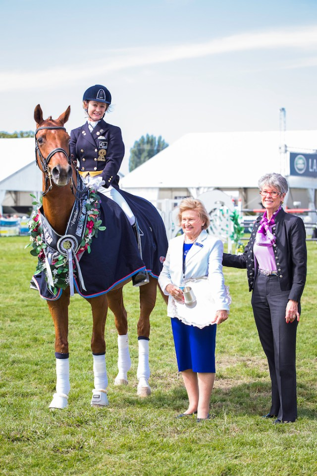 Steiny set NZ records at the 2015 Horse of the Year Show (Image: Libby Law)