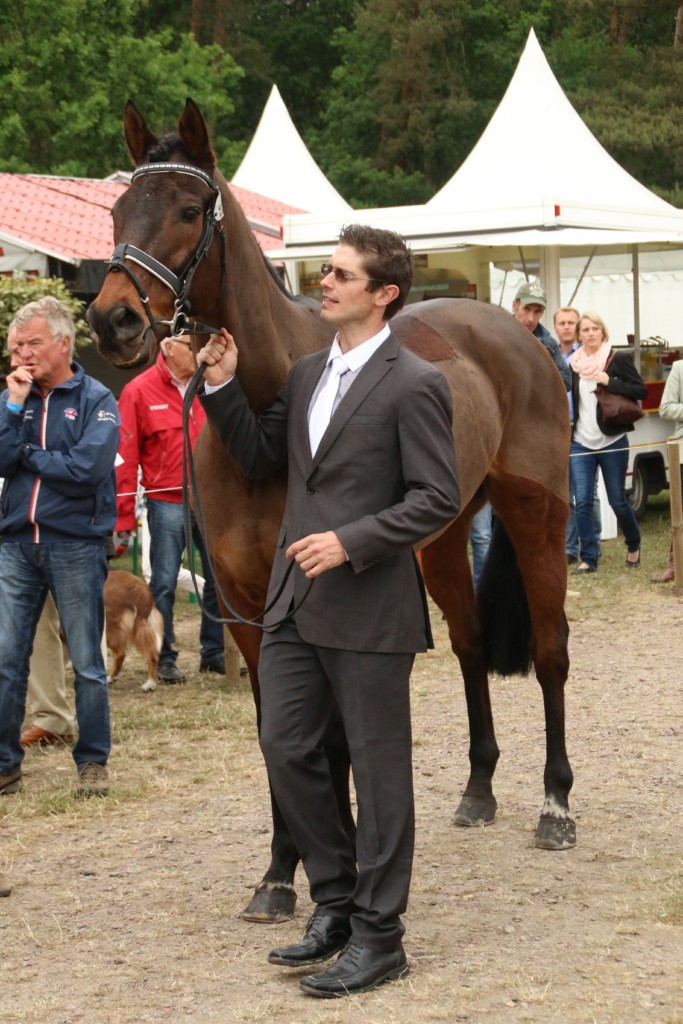 Nadal about to trot up at Luhmuhlen 2015 (Image: Jane Thompson)
