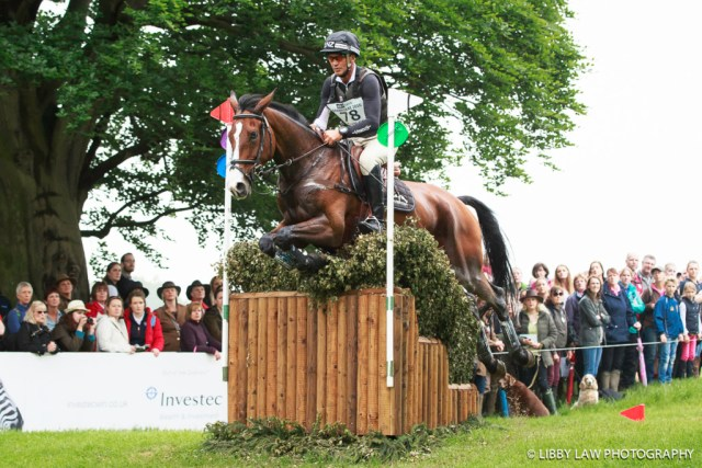Andrew Nicholson and Jet Set had a fantastic cross country round. (Image: Libby Law)