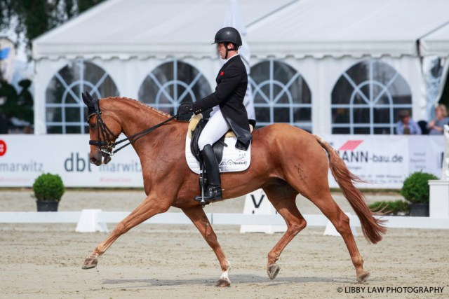 Julien Despontin (Waldano 36) leading after the first day of dressage at Luhmühlen. (Image: Libby Law)