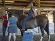 Horseback Ustrasana Pose!