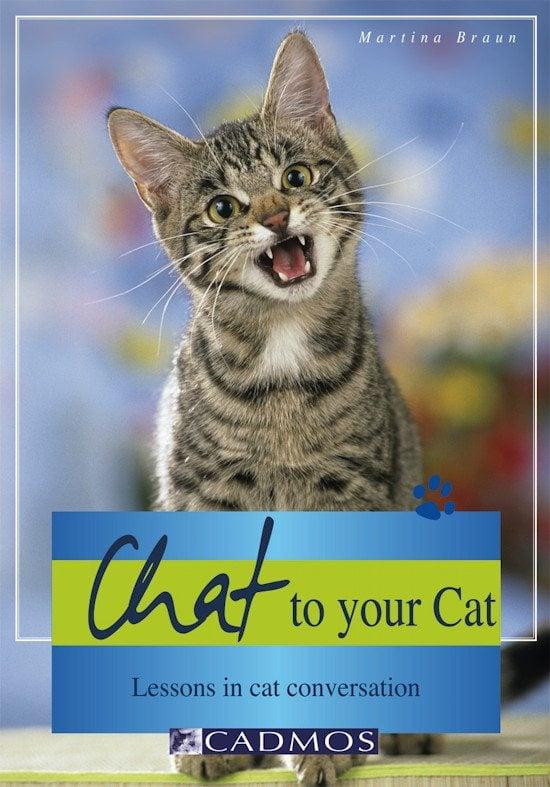 katteadfærd