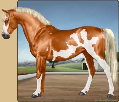 realistic horse games # 24