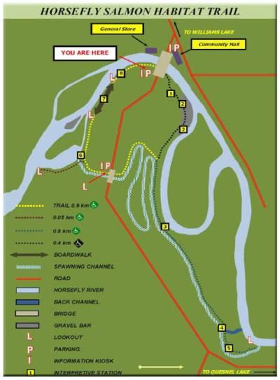 Salmon-Trail-Map