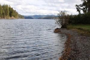 Kokanee Spawning grounds on Horsefly Lake