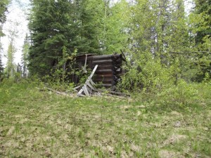 old log homestead