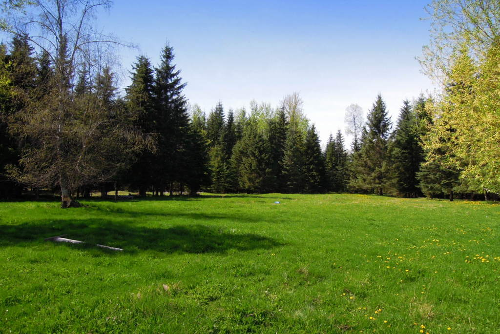 19 waterfront acres on Horsefly River - 3754 Horsefly-Quesnel Lake Road