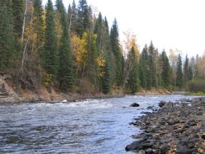 9 acres on Horsefly River