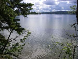 Gorgeous 5 Acre Waterfront Lot on Big Lake - Lot 17 Pritchard Road, Big Lake Ranch