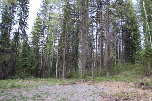 Lot 4 Horsefly Landing Road - 4.4 Acre Lot with Building Site near Horsefly Lake