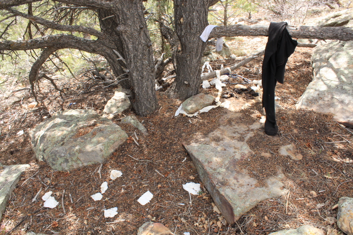 Some used toilet paper and shit at a homeless camp off of a proposed freeride trail in Horse Gulch.