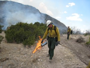 Wildland firefighter Brian Del Santo lays down fire in a pinon/ juniper fuel type in Texas.