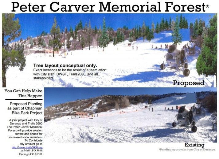 Proposed Peter Carver Memorial Forest tree plantation on Chapman Hill.
