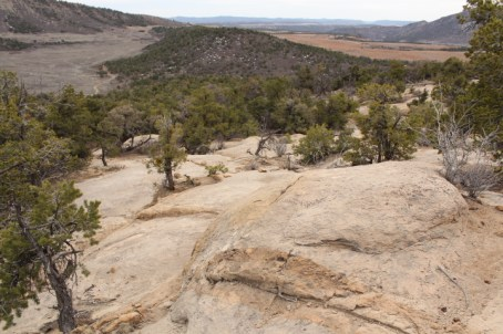 An area on the alignment where a progressive freeride trail known as The Scratch is slated for construction this summer.