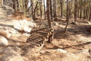 This is the jump that Cathy Metz, Durango's Director of Parks and Recreation had City staff destroy up in Dalla Mountain Park. Just think of the same place, but without the logs. It's gone.