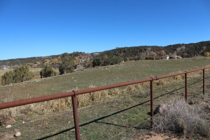 Jerry Zink's land that's held under a conservation easement has been grazed recently.